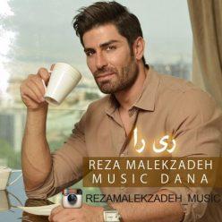 Reza MalekZadeh Rira