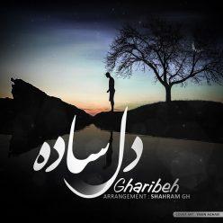 Gharibeh Dele Sade