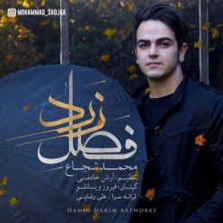 محمد شجاع فصل زرد