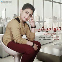 Saleh Jafarzadeh Tanha Mishi