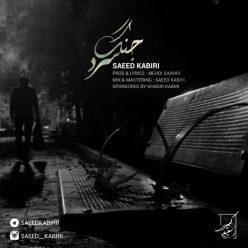 Saeed Kabiri Jange Sard