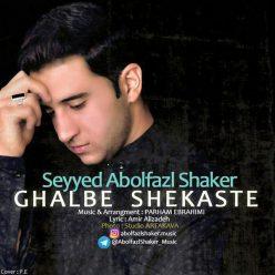 Abolfazl Shaker