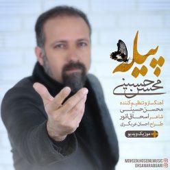 دانلود آهنگ محسن حسینی به نام پیله