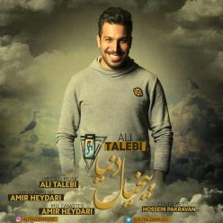 Ali Talebi Bikhiyal Donya