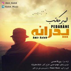 Amir Kateb Pedarane