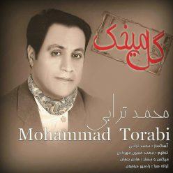 Mohammad Torabi Gol Mikhak