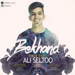 Ali Seltoo Bekhand