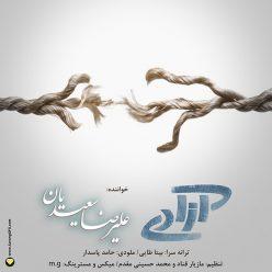 Alireza Saeedian The Freedom