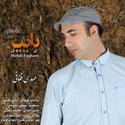 Mehdi Faghani Paeez