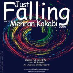 Mehran Kokabi Just Falling Down 640