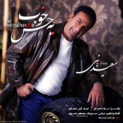 Saeed Nabi Ye Hesse Khoob