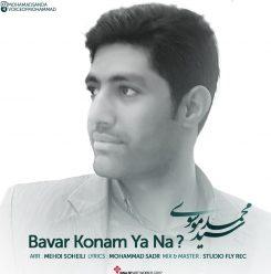 محمد موسوی باور کنم یا نه
