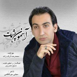 Mohammad Reza Torkzade Asemoone Cheshmat