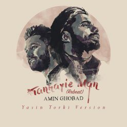 Amin Ghobad Tanhayie Man Yasin Torki Remix