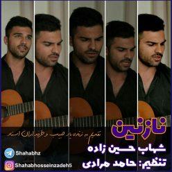 Shahab Hossein Zadeh Nazanin