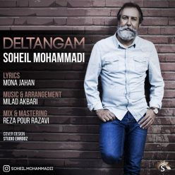 Soheil Mohammadi Deltangam