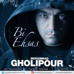 Mohammad Gholipour Bi Ehsas