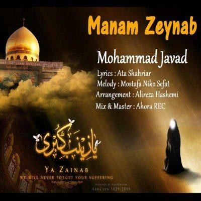 محمد جواد منم زینب