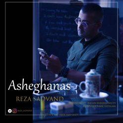 Reza Sadvand Asheghanas