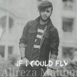 Alireza Mahbobi If I Could Fly