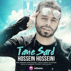 Hossein Hosseini Tane Sard