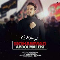 Mohammad Abdolmaleki Shoore Shirin