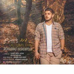 Mohammad Hashempour Darde Paeizi