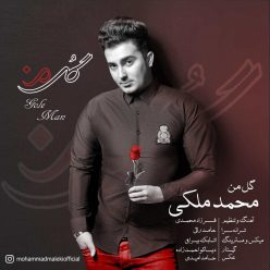 Mohammad Maleki Gole Man