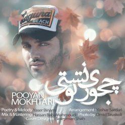 Pooyan Mokhtari Chejoori Toonest