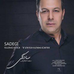 Saeed Tashakori Sadegi