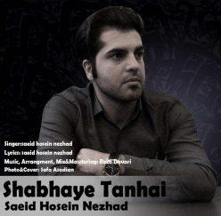 Saeid Hossein Nezhad Shabhaye Tanhaei
