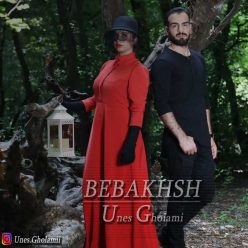 Unes Gholami Bebakhsh