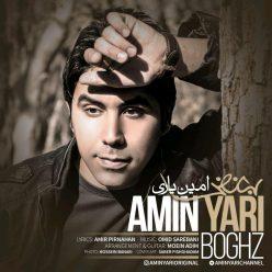 Amin Yari Boghz