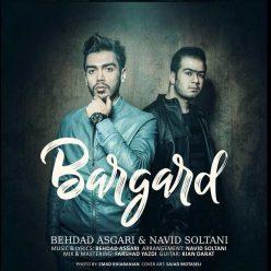 Behdad Asgari Navid Soltani Bargard