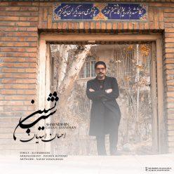 Ehsan Assadian Shab Neshin
