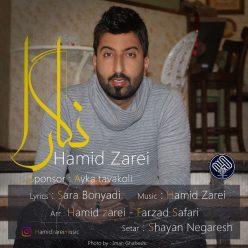 Hamid Zarei