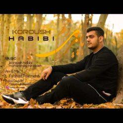 Koroush Habibi Paeize Bi Rahm