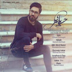Mohammad Shafiee Hesse Paeezi