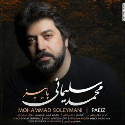 Mohammad Soleymani Paeiz