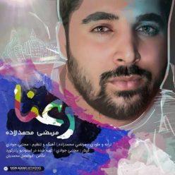 Morteza Mohammad Zadeh Raana