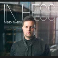 Mehdi Naeini In Hess