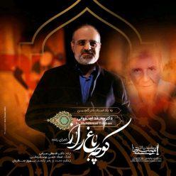 Mohammad Esfehani Koocheh Bagh e Raaz Live