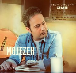 Reza Gholami Mojezeh