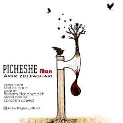 Amir Zolfaghari Picheshe Man
