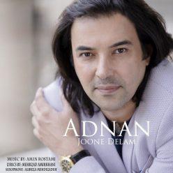 Adnan Joone Delam
