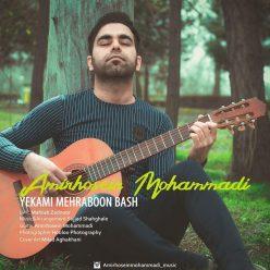 Amirhosein Mohammadi Yekami Mehraboon Bash