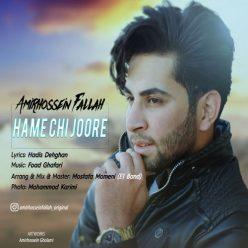 Amir Hossein Fallah Hame Chi Joore