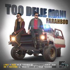 Farahbod Too Delie Mani