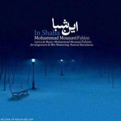 محمد موسوی این شبا