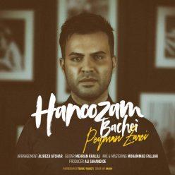 Peyman Zarei Hanoozam Bachei